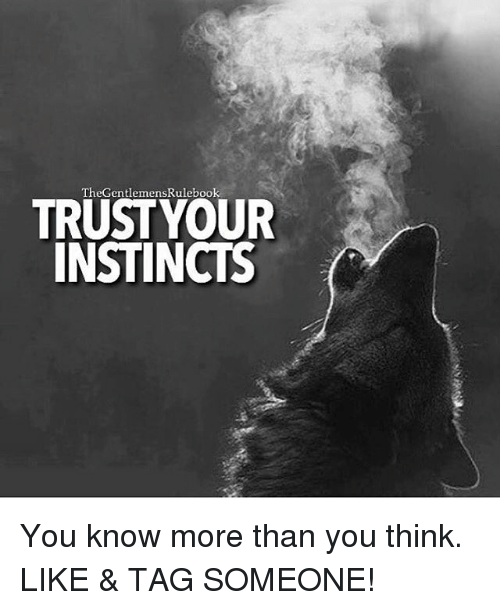 Memes, Tag Someone, and 🤖: TheGentlemensRulebook  TRUSTYOUR  INSTINCTS You know more than you think. LIKE & TAG SOMEONE!