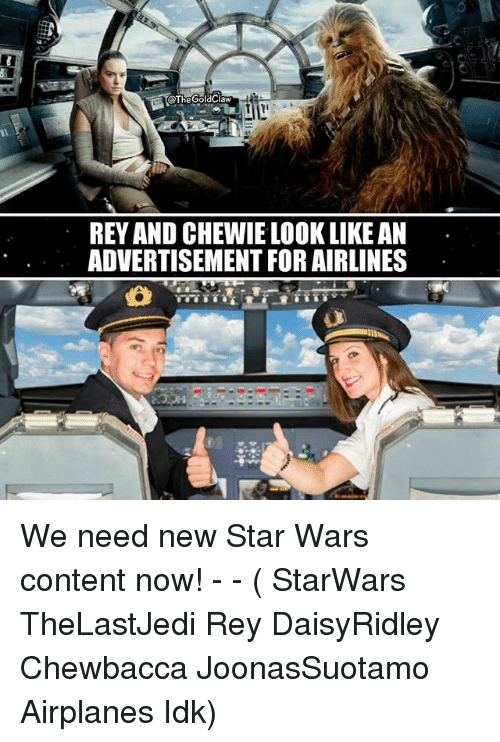 Chewbacca, Memes, and Rey: TheGoldClaw  REY AND CHEWIE LOOK LIKE AN  ADVERTISEMENT FOR AIRLINES We need new Star Wars content now! - - ( StarWars TheLastJedi Rey DaisyRidley Chewbacca JoonasSuotamo Airplanes Idk)