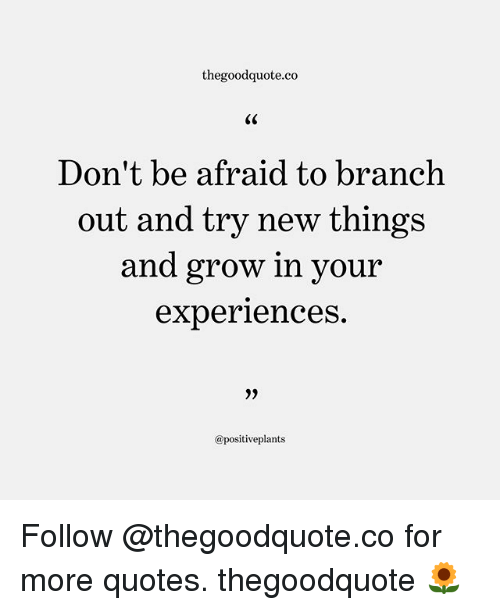 Memes, Quotes, and 🤖: thegoodquote.co  Don't be afraid to branch  out and try new things  and grow in you  experiences.  9)  @positiveplants Follow @thegoodquote.co for more quotes. thegoodquote 🌻