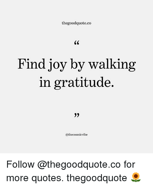 Memes, Quotes, and 🤖: thegoodquote.co  Find joy by walking  in gratitude  @thecosmicvibe Follow @thegoodquote.co for more quotes. thegoodquote 🌻