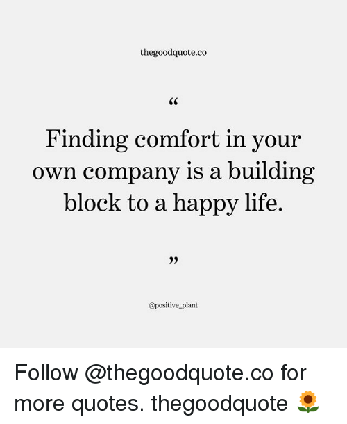 Thegoodquoteco Finding Comfort In Your Own Company Is A