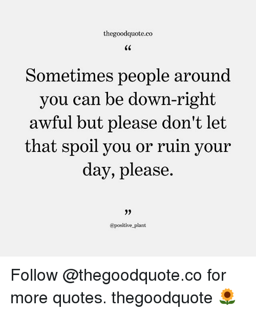 Spoiles: thegoodquote.co  Sometimes people around  you can be down-right  awful but please don't let  that vour  spoil you or ruin  day, please  0)  @positive_plant Follow @thegoodquote.co for more quotes. thegoodquote 🌻