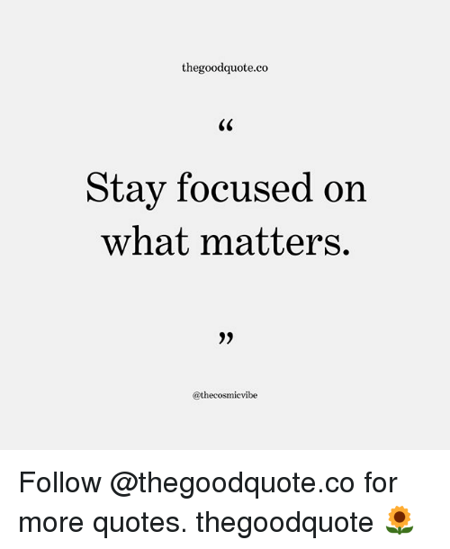 Ornings: thegoodquote.co  Stav focused orn  what matters.  9)  @thecosmicvibe Follow @thegoodquote.co for more quotes. thegoodquote 🌻