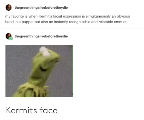 facial-expression: thegreenthingslivebeforetheydie  my favorite is when Kermit's facial expression is simultaneously an obvious  hand in a puppet but also an instantly recognizable and relatable emotion  thegreenthingslivebeforetheydie Kermits face