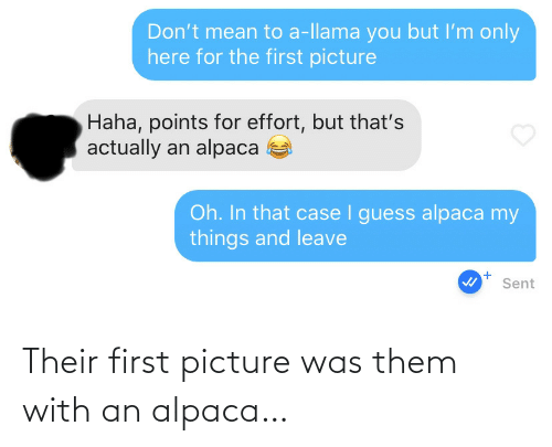 Alpaca: Their first picture was them with an alpaca…