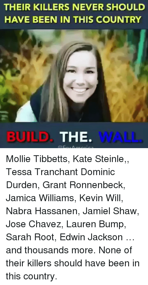 build-the-wall: THEIR KILLERS NEVER SHOULD  HAVE BEEN IN THIS COUNTRY  BUILD  THE.  WALL. Mollie Tibbetts, Kate Steinle,, Tessa Tranchant Dominic Durden, Grant Ronnenbeck, Jamica Williams, Kevin Will, Nabra Hassanen, Jamiel Shaw, Jose Chavez, Lauren Bump, Sarah Root, Edwin Jackson …and thousands more. None of their killers should have been in this country.