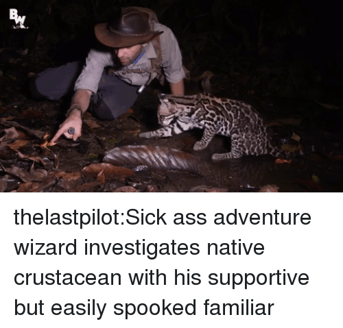 Spooked: thelastpilot:Sick ass adventure wizard investigates native crustacean with his supportive but easily spooked familiar