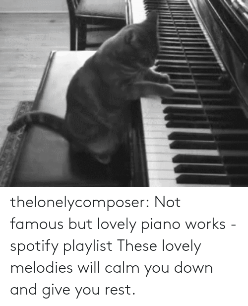 famous: thelonelycomposer: Not famous but lovely piano works -spotify playlist These lovely melodies will calm you down and give you rest.