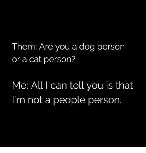 Memes, 🤖, and  Dog Person: Them: Are you a dog person  or a cat person?  Me: All I can tell you is that  I'm not a people person.