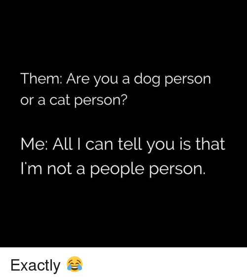 Memes, 🤖, and  Dog Person: Them: Are you a dog person  or a cat person?  Me: All I can tell you is that  I'm not a people person Exactly 😂