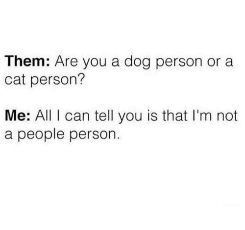 Humans of Tumblr, Dog, and Cat: Them: Are you a dog person or a  cat person?  Me: Al can tell you is that I'm not  a people person