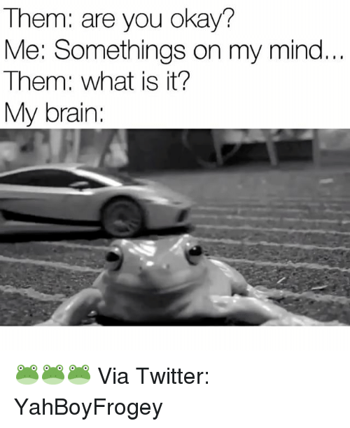 Brains, Brain, and What Is: Them: are you okay?  Me: Somethings on my mind  Them: what is it?  My brain: 🐸🐸🐸 Via Twitter: YahBoyFrogey