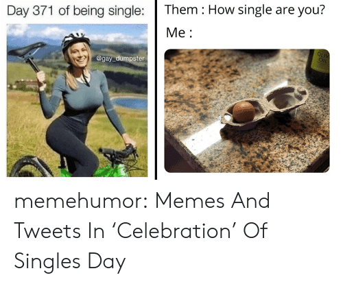 celebration: Them How single are you?  Day 371 of being single:  Ме:  OLIV  OIL  @gay dumpster memehumor:  Memes And Tweets In 'Celebration' Of Singles Day