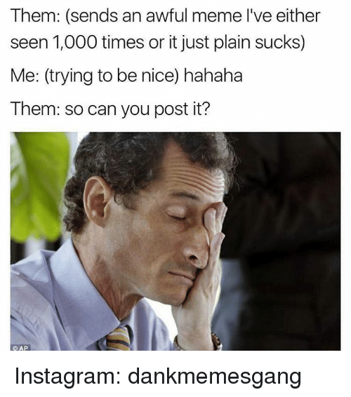 Instagram, Memes, and Time: Them: (sends an awful meme l've either  seen 1,000 times or it just plain sucks)  Me: (trying to be nice) hahaha  Them: socan you post it?  AP Instagram: dankmemesgang