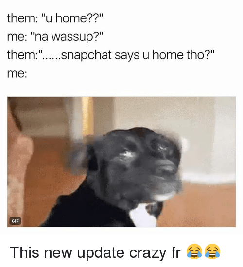"Crazy, Funny, and Gif: them: ""u home??""  me: ""na wassup?""  me:  GIF This new update crazy fr 😂😂"