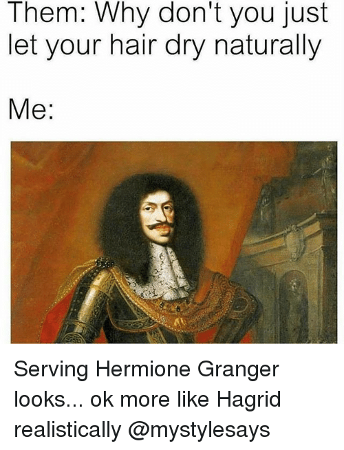 Hermione, Hair, and Girl Memes: Them: Why don't you just  let your hair dry naturally  Me: Serving Hermione Granger looks... ok more like Hagrid realistically @mystylesays