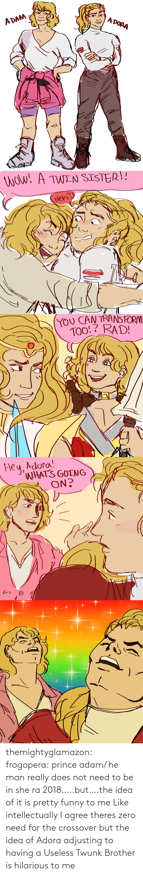 Zero: themightyglamazon: frogopera: prince adam/ he man really does not need to be in she ra 2018…..but….the idea of it is pretty funny to me   Like intellectually I agree theres zero need for the crossover but the idea of Adora adjusting to having a Useless Twunk Brother is hilarious to me