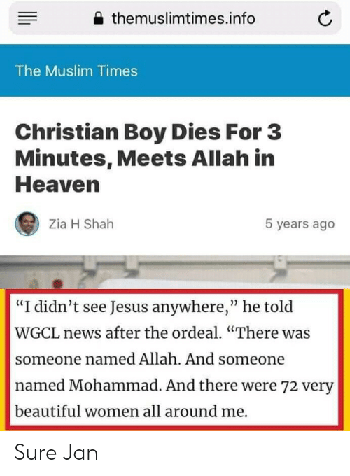 "Sure Jan: themuslimtimes.info  The Muslim Times  Christian Boy Dies For 3  Minutes, Meets Allah in  Heaven  Zia H Shah  5 years ago  ""I didn't see Jesus anywhere,"" he told  