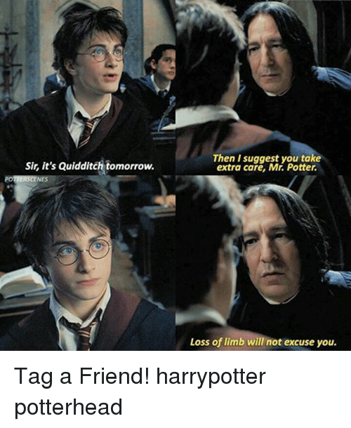 suggestive: Then I suggest you take  extra care, Mr. Potter.  Sir, it's Quidditch tomorrow.  Loss of limb will not excuse you. Tag a Friend! harrypotter potterhead