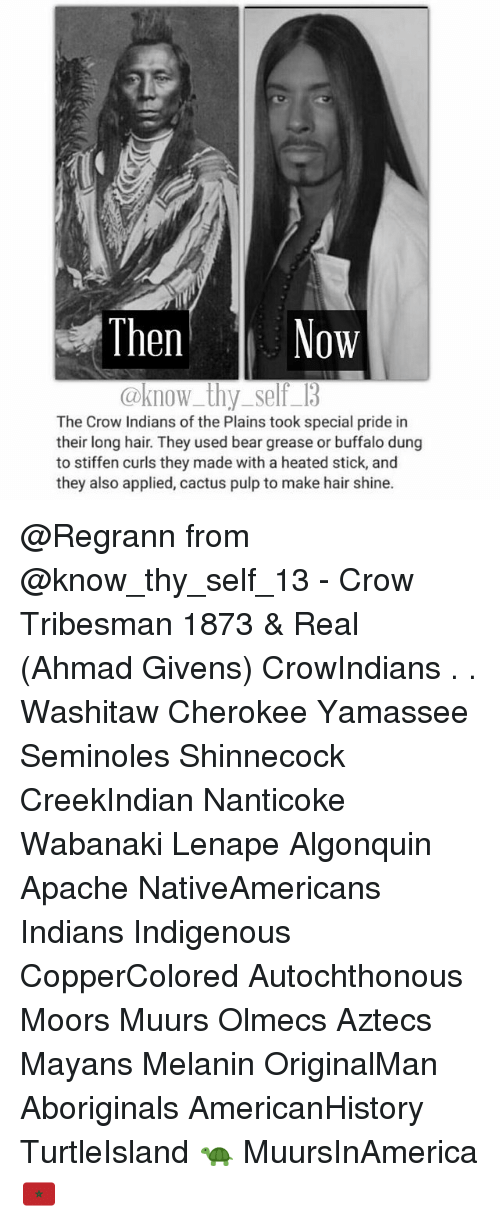 Memes, Buffalo, and 🤖: Then  Now  @know thy self 13  The Crow Indians ofthe Plains took special pride in  their long hair. They used bear grease or buffalo dung  to stiffen curls they made with a heated stick, and  they also applied, cactus pulp to make hair shine. @Regrann from @know_thy_self_13 - Crow Tribesman 1873 & Real (Ahmad Givens) CrowIndians . . Washitaw Cherokee Yamassee Seminoles Shinnecock CreekIndian Nanticoke Wabanaki Lenape Algonquin Apache NativeAmericans Indians Indigenous CopperColored Autochthonous Moors Muurs Olmecs Aztecs Mayans Melanin OriginalMan Aboriginals AmericanHistory TurtleIsland 🐢 MuursInAmerica 🇲🇦
