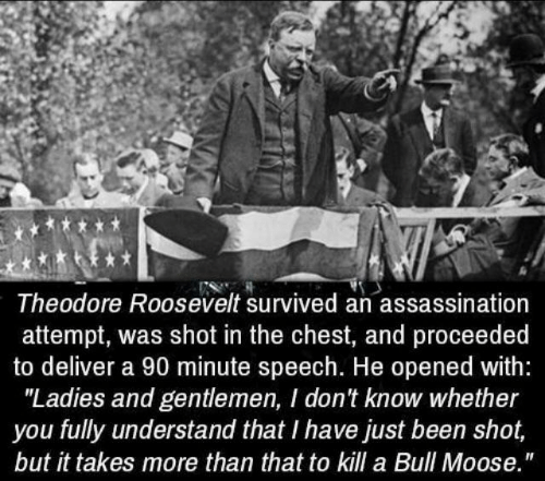 "Assassination: Theodore Roosevelt survived an assassination  attempt, was shot in the chest, and proceeded  to deliver a 90 minute speech. He opened with:  ""Ladies and gentlemen, I don't know whether  you fully understand that I have just been shot,  but it takes more than that to kill a Bull Moose."""