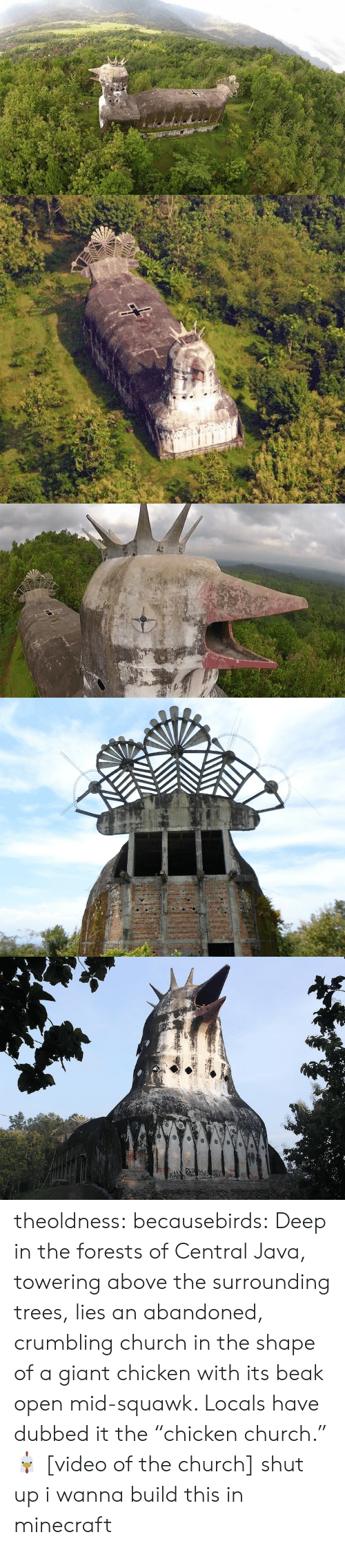 "Chicken Church: theoldness:  becausebirds:  Deep in the forests of Central Java, towering above the surrounding trees, lies an abandoned, crumbling church in the shape of a giant chicken with its beak open mid-squawk. Locals have dubbed it the ""chicken church."" 🐔 [video of the church]   shut up i wanna build this in minecraft"