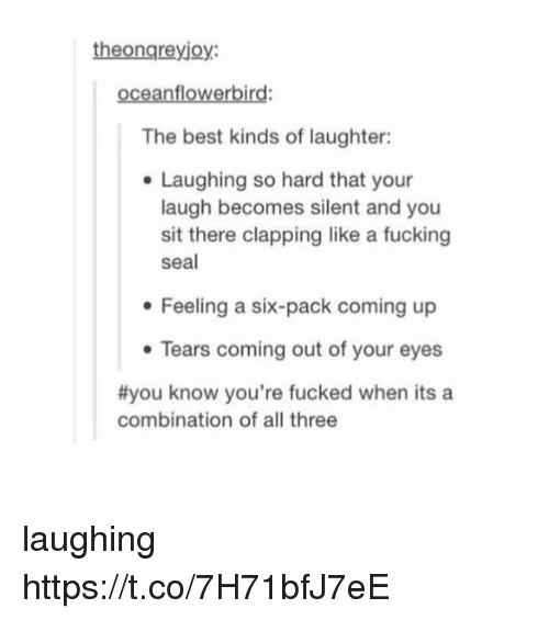 Fucking, Memes, and Best: theongreyjoy:  oceanflowerbird:  The best kinds of laughter:  Laughing so hard that your  laugh becomes silent and you  sit there clapping like a fucking  seal  Feeling a six-pack coming up  Tears coming out of your eyes  #you know you're fucked when its a  combination of all three laughing https://t.co/7H71bfJ7eE