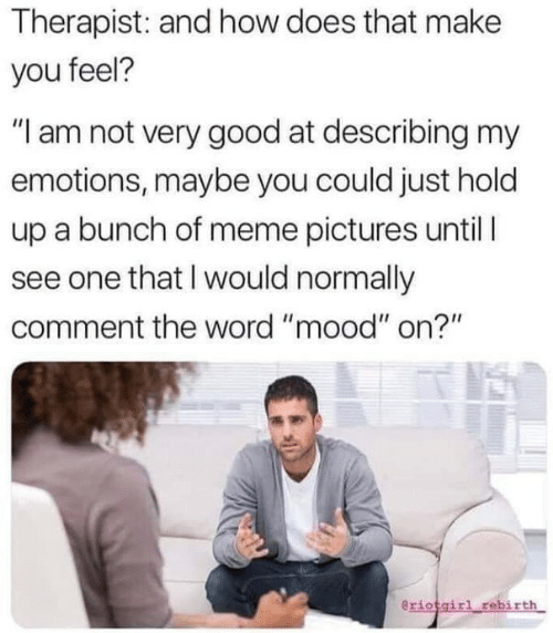 "How Does That Make You Feel: Therapist: and how does that make  you feel?  ""I am not very good at describing my  emotions, maybe you could just hold  up a bunch of meme pictures until  see one that I would normally  comment the word ""mood"" on?""  eriotgirl rebirth"