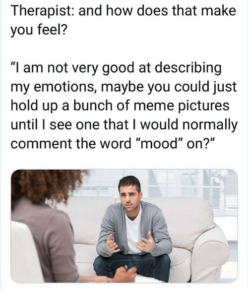 "How Does That Make You Feel: Therapist: and how does that make  you feel?  ""I am not very good at describing  my emotions, maybe you could just  hold up a bunch of meme pictures  until I see one that I would normally  comment the word ""mood"" on?"""