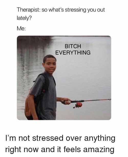 Bitch, Girl Memes, and Amazing: Therapist: so what's stressing you out  lately?  Me:  BITCH  EVERYTHING I'm not stressed over anything right now and it feels amazing