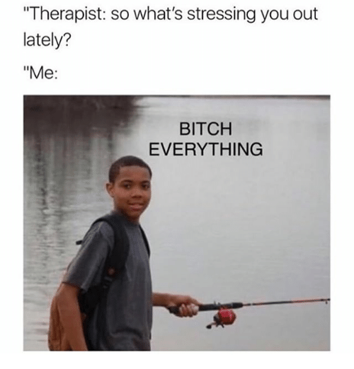 "Bitch, Girl Memes, and You: Therapist: so what's stressing you out  lately?  ""Me:  BITCH  EVERYTHING"