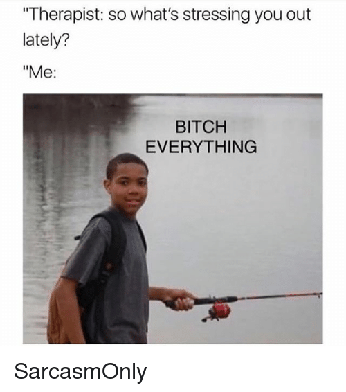 "Bitch, Funny, and Memes: ""Therapist: so what's stressing you out  lately?  ""Me:  BITCH  EVERYTHING SarcasmOnly"