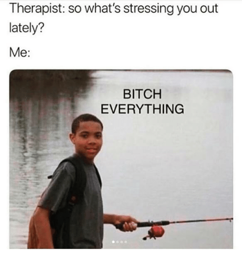 Bitch, Relationships, and You: Therapist: so what's stressing you out  lately?  Me:  BITCH  EVERYTHING