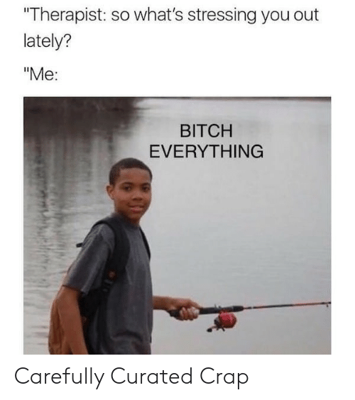 """Curated: Therapist: so what's stressing you out  lately?  """"Me:  BITCH  EVERYTHING Carefully Curated Crap"""