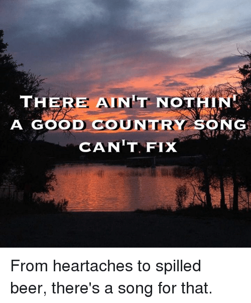 there aint nothin a good country song cant fix from 3438935 🔥 25 best memes about country song country song memes