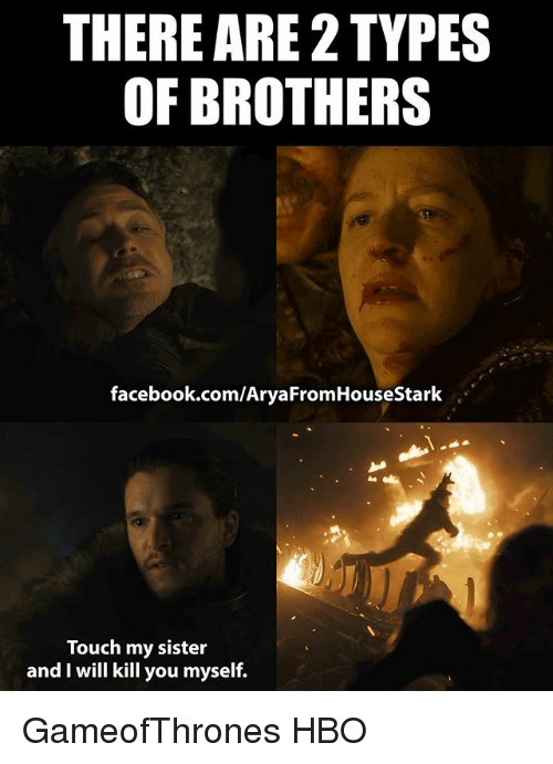 I Will Kill You: THERE ARE 2 TYPES  OF BROTHERS  facebook.com/AryaFromHouseStark  Touch my sister  and I will kill you myself. GameofThrones HBO