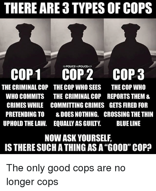 Image result for criminal cops