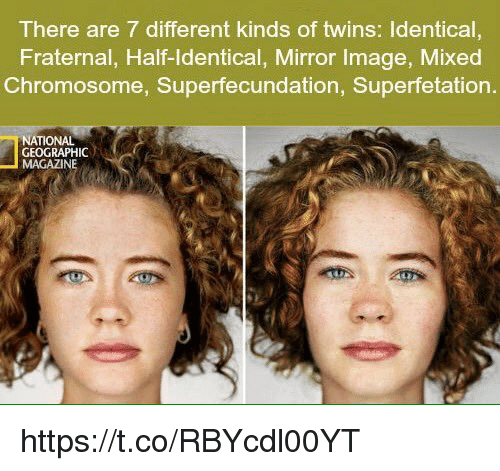 Fraternity, Memes, and National Geographic: There are 7 different kinds of twins: ldentical,  Fraternal, Half-Identical, Mirror Image, Mixed  Chromosome, Superfecundation, Superfetation  NATIONAL  GEOGRAPHIC  MAGAZINE https://t.co/RBYcdl00YT
