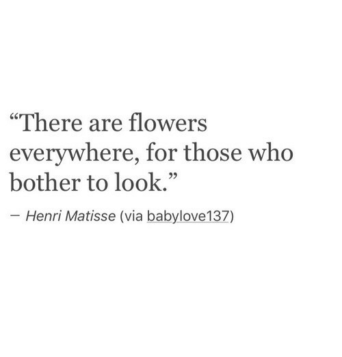 "henri: ""There are flowers  everywhere, for those who  bother to look.""  Henri Matisse (via babylove137)"