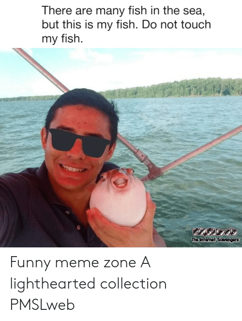 Pmslweb: There are many fish in the sea,  but this is my fish. Do not touch  my fish  The nternet Saavengers Funny meme zone A lighthearted collection PMSLweb