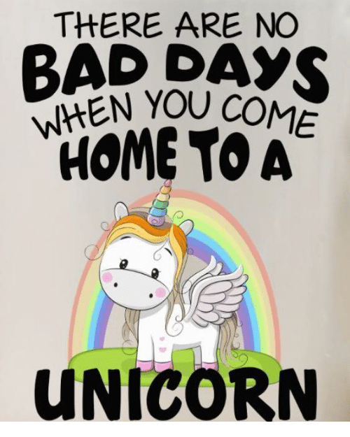 Unicornism: THERE ARE NC  WHEN YOU  HOME TO A  UNICORN