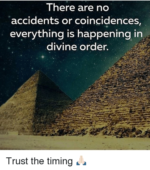 Memes, 🤖, and Divine: There are no  accidents or coincidences  everything is happening in  divine order. Trust the timing 🙏🏻