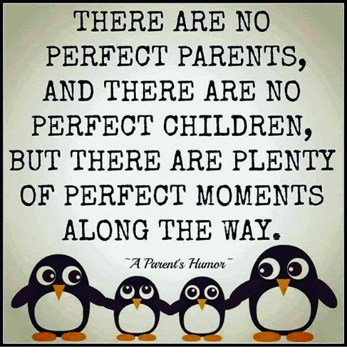 Parenting Humor: THERE ARE NO  PERFECT PARENTS,  AND THERE ARE NO  PERFECT CHILDREN  BUT THERE ARE PLENTY  OF PERFECT MOMENTS  ALONG THE WAY.  A Parents, Humor AA A  OG G