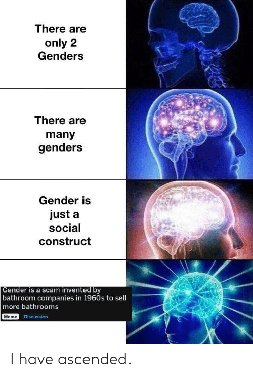 1960s: There are  only 2  Genders  There are  many  genders  Gender is  just a  social  construct  Gender is a scam invented by  bathroom companies in 1960s to sell  more bathrooms  Meme Discussion I have ascended.