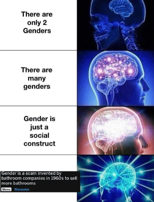 1960s: There are  only 2  Genders  There are  many  genders  Gender is  just a  social  construct  Gender is a scam invented by  bathroom companies in 1960s to sell  more bathrooms  Meme Discussion