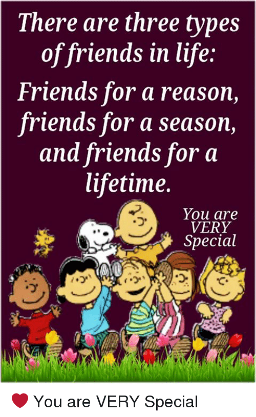 Friends, Life, and Memes: There are three types  of friends in life:  Friends for a reason,  friends for a season,  and friends for a  lifetime.  You are  VERY  Special  (ウ、  っ  て、  ヴ ❤ You are VERY Special