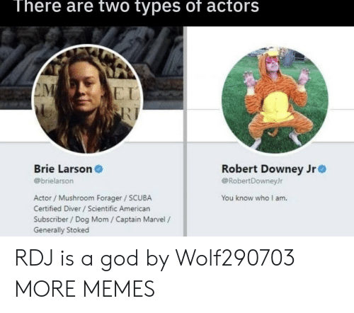 Robert Downey Jr: There are two types of actors  E I  Brie Larson  @brielarson  Robert Downey Jr  @RobertDowneyJr  Actor / Mushroom Forager SCUBA  Certified Diver /Scientific American  Subscriber/ Dog Mom / Captain Marvel /  Generally Stoked  You know who I am. RDJ is a god by Wolf290703 MORE MEMES