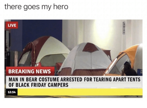 there goes my hero: there goes my hero  LIVE  BREAKING NEWS  MAN IN BEAR COSTUME ARRESTED FOR TEARING APART TENTS  OF BLACK FRIDAY CAMPERS  12:54