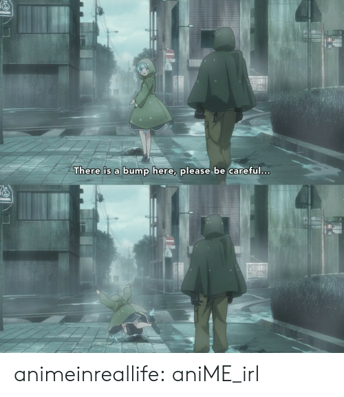 bump: There is a bump here, please be careful.c. animeinreallife:  aniME_irl