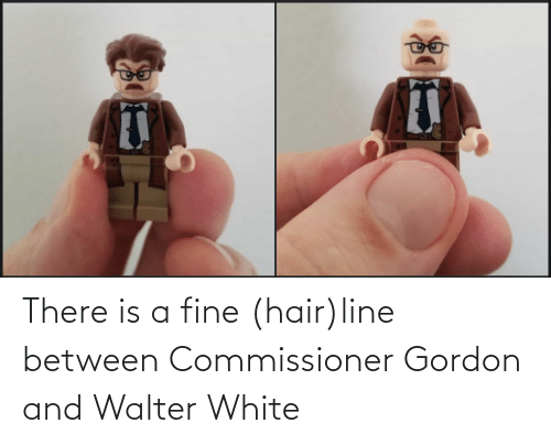Walter: There is a fine (hair)line between Commissioner Gordon and Walter White